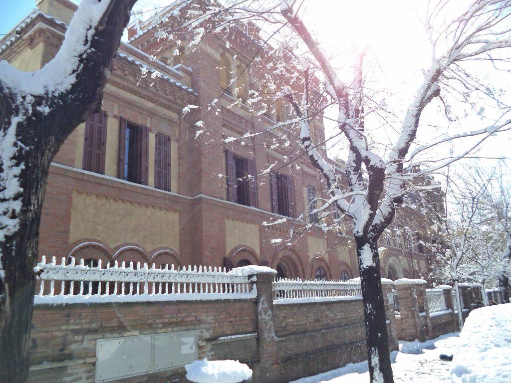 Alberi autunnali ricolmi di neve